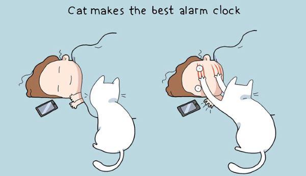 7. fumetti gatto