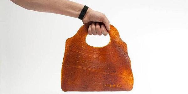 fruitleather bag