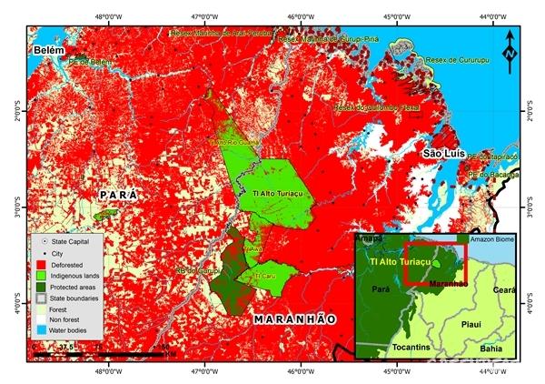 kapor amazzonia 000