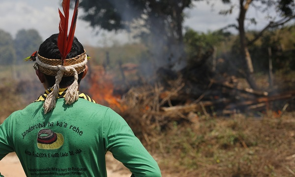 kapor amazzonia 04