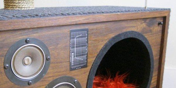 radio gatto1