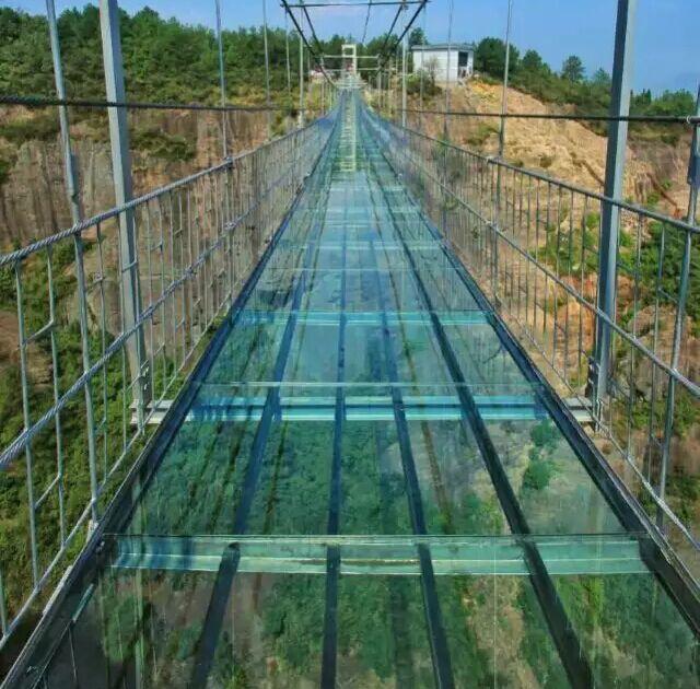 Ponte vetro8