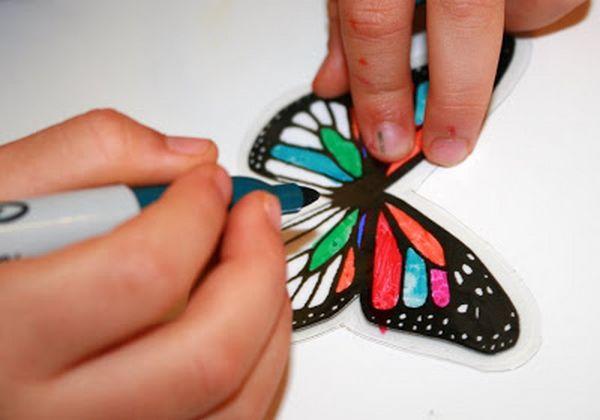 ali farfalla 5