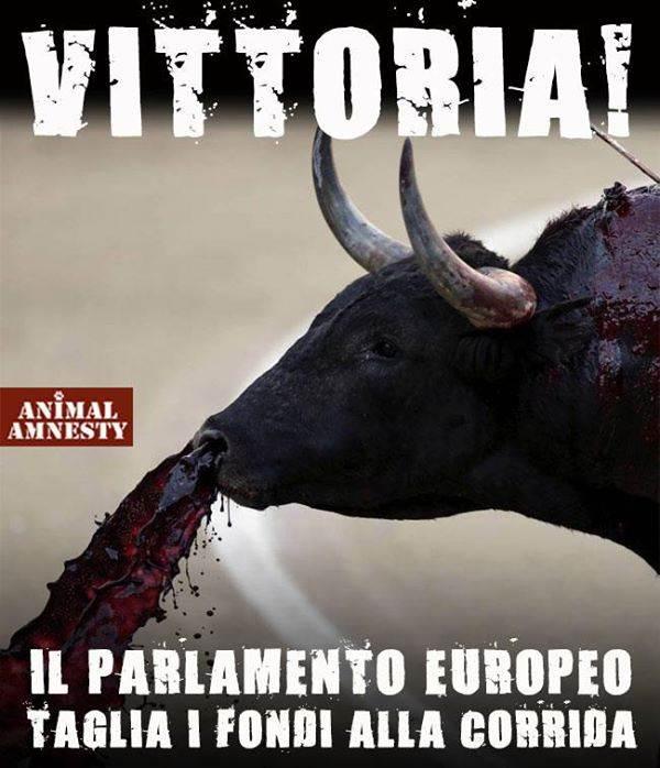 animal Amnesty