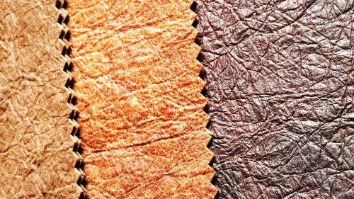b2ap3_thumbnail_Ananas_AnamBIG3.width-1000.jpg
