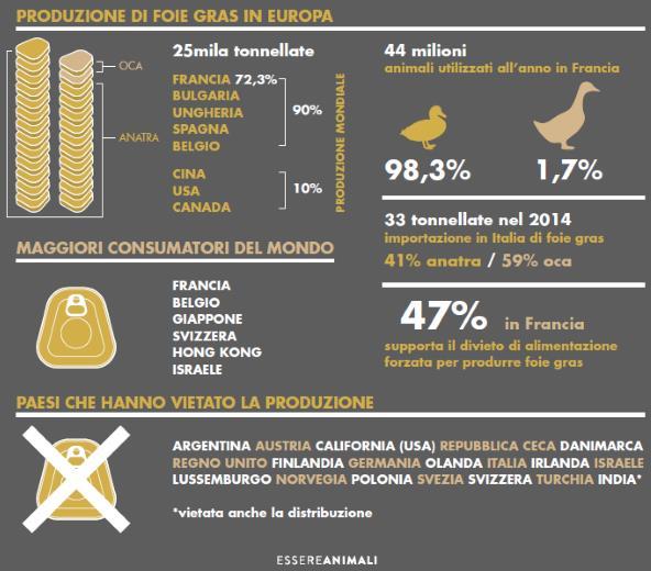 foiegras infografica