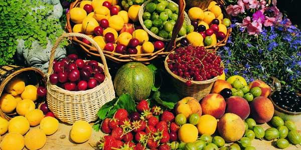 frutta previene alzheimer