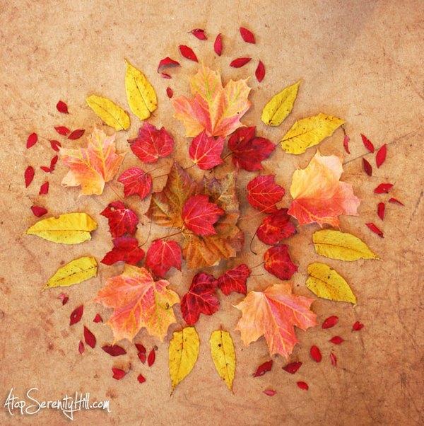 mandala foglie 1