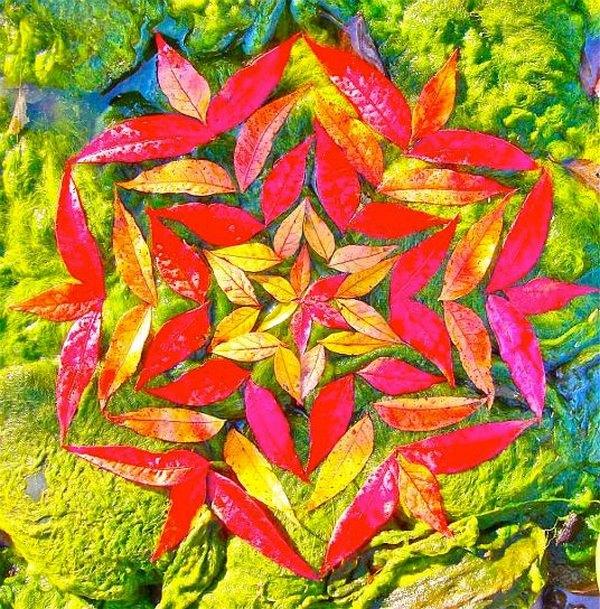 mandala foglie 3