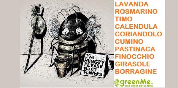 nutrire api