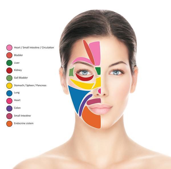 riflessologia facciale schema