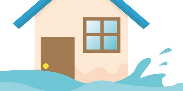 sopravvivere diluvio inondazione