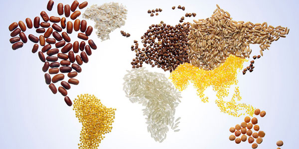 world food day 2015