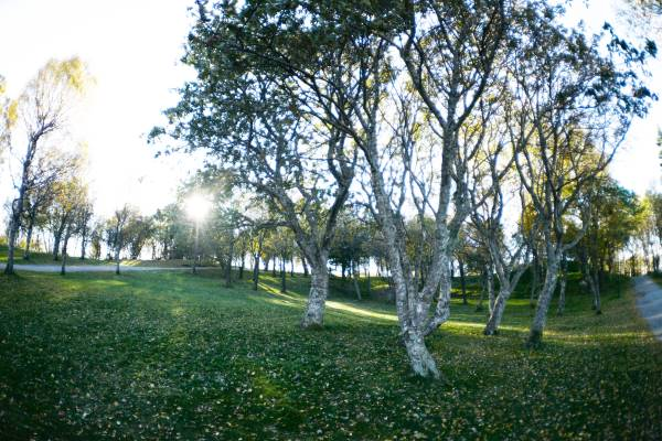 1 Bod parken Frisbeegolf