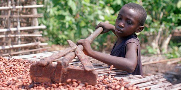 bambini schiavi cioccolato