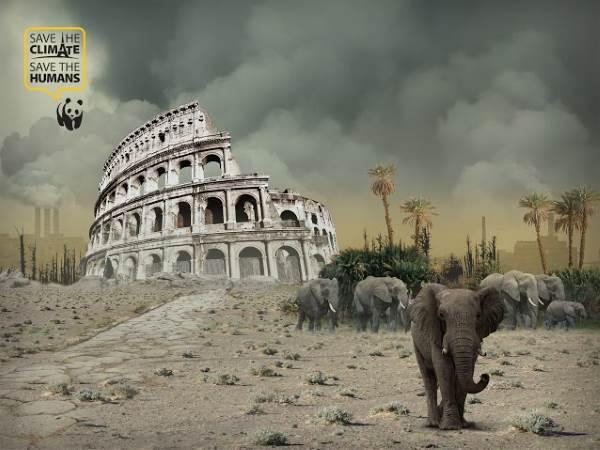 roma HD Copia