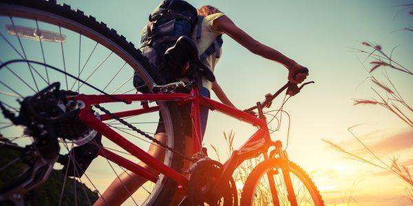 bici vista