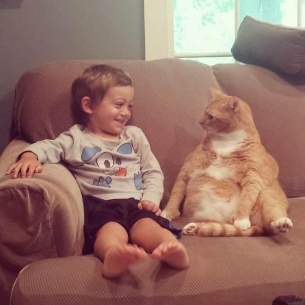 gatto bambino 1