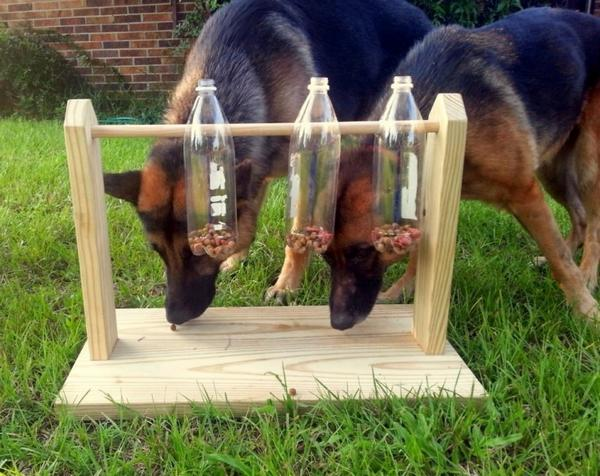 giocattolo cani 2