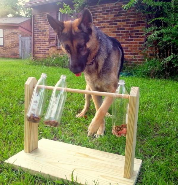 giocattolo cani 3