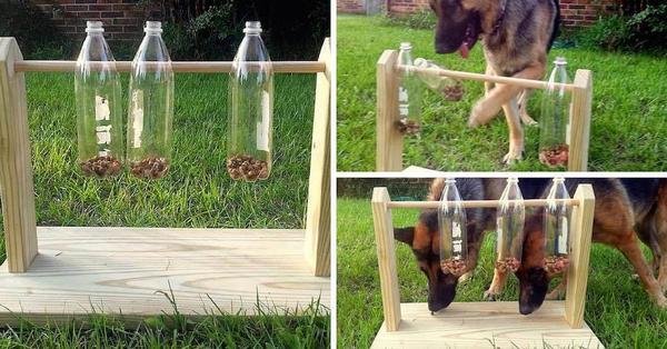 giocattolo cani 5