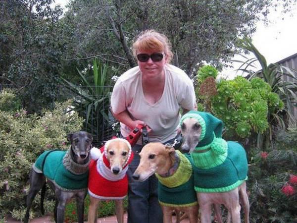 maglioni cani 6