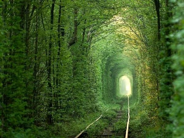 tunnel of love.jpg.638x0 q80 crop smart