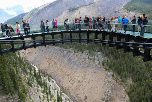 TouristsGlacierSkywalk.jpg.638x0 q80 crop smart