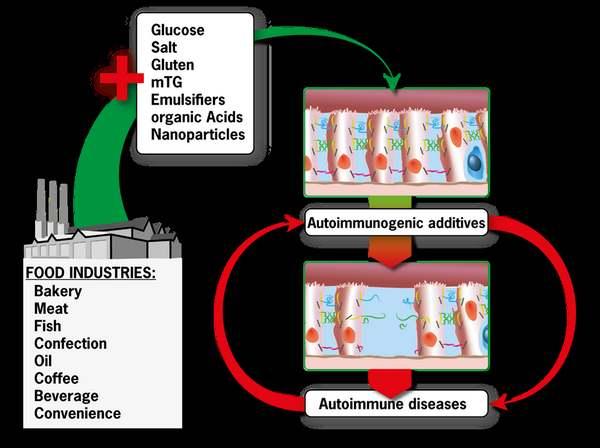 additivi alimentari malattie autoimmuni