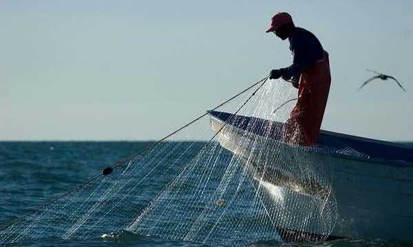 cina pesca totaba