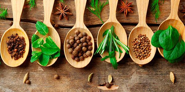 conservere erbe aromatiche spezie