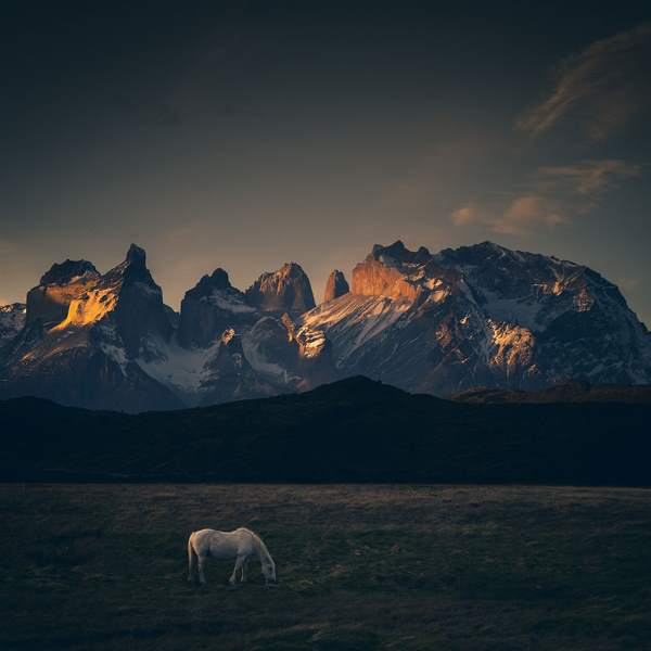 edge of the world patagonia chile mysteries 8