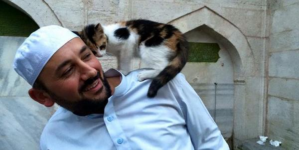 gatti moschea 8
