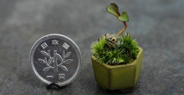 piante casa 7