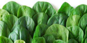 Spinaci: calorie, proprietà e benefici per la salute
