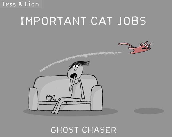 1. lavoro gatti