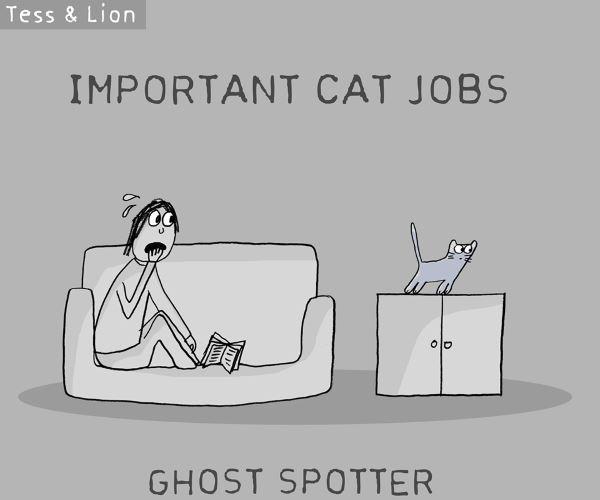 2. lavoro gatti