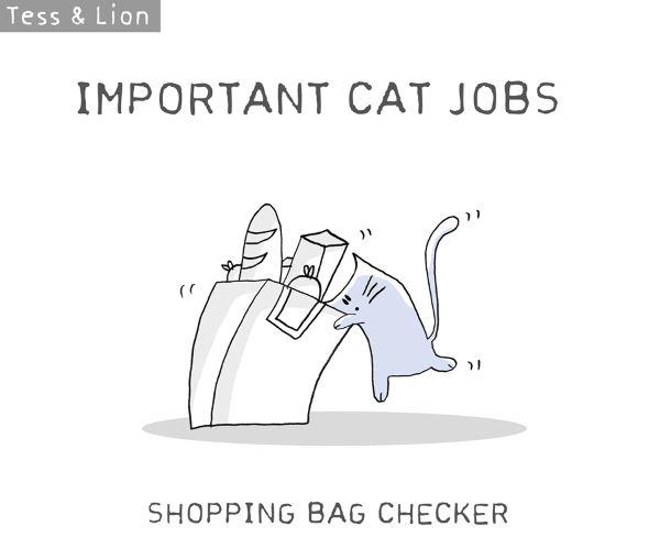 4. lavoro gatti