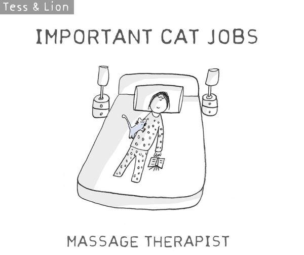 9. lavoro gatti