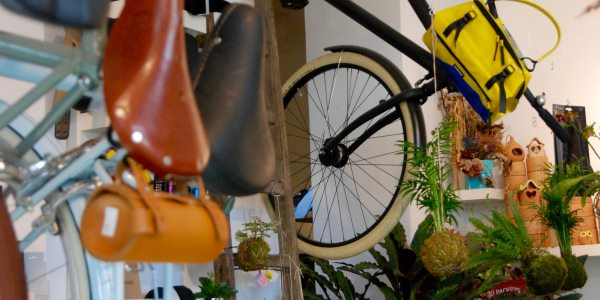 bici piante 3