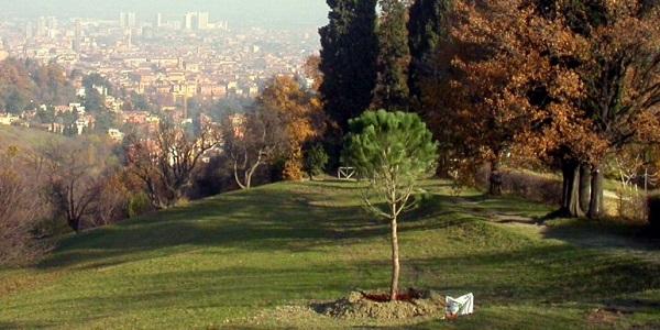 fondazione villa ghigi 05