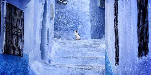 marocco citta muri blu chefchaouen 005
