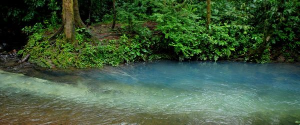 rio celeste 4