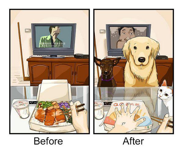 vita cane 1