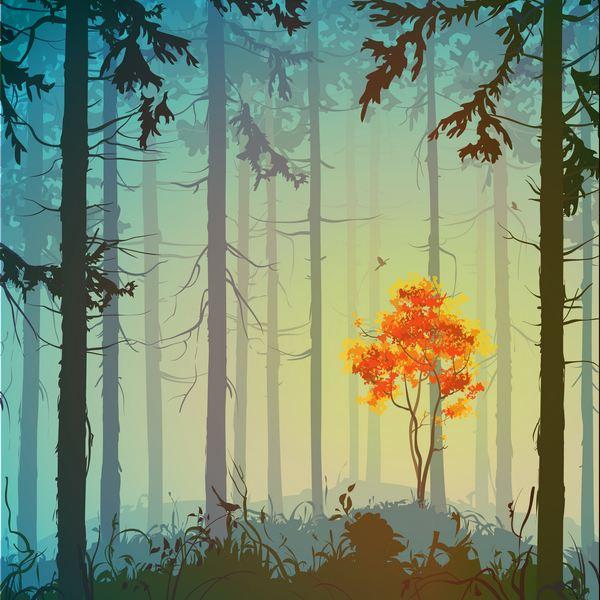 alberi saggezza thoreau