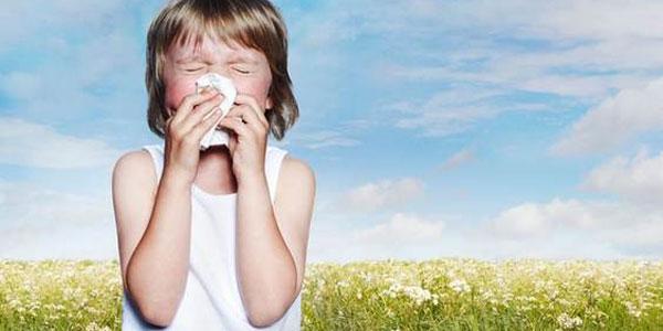 allergie antistaminici natu