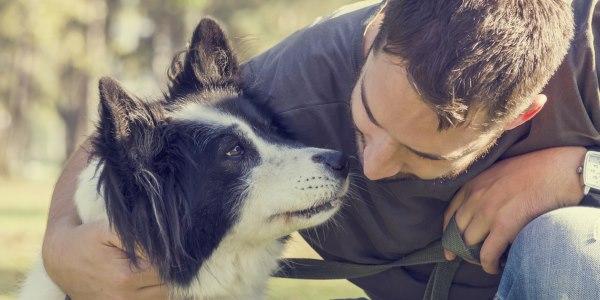 cane miti da sfatare