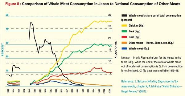 consumo carne balena giappone 00