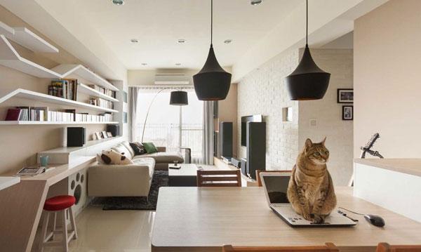gatti design4