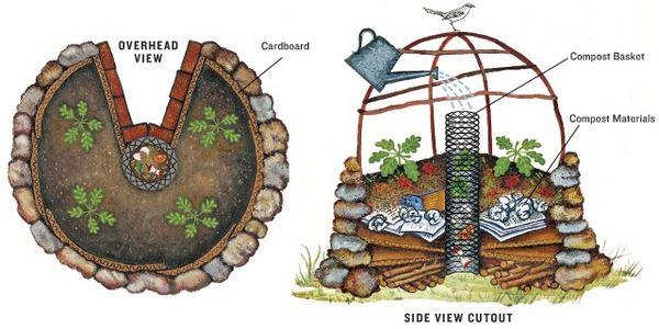 keyhole garden 5
